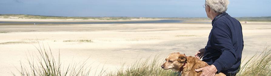 Senior man on beach with dog.